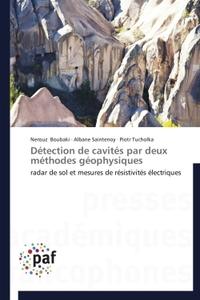 DETECTION DE CAVITES PAR DEUX METHODES GEOPHYSIQUES