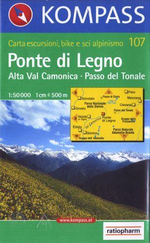 107 PONTE DI LEGNO ALTA VAL CAMONICA PASSO DEL TONALE