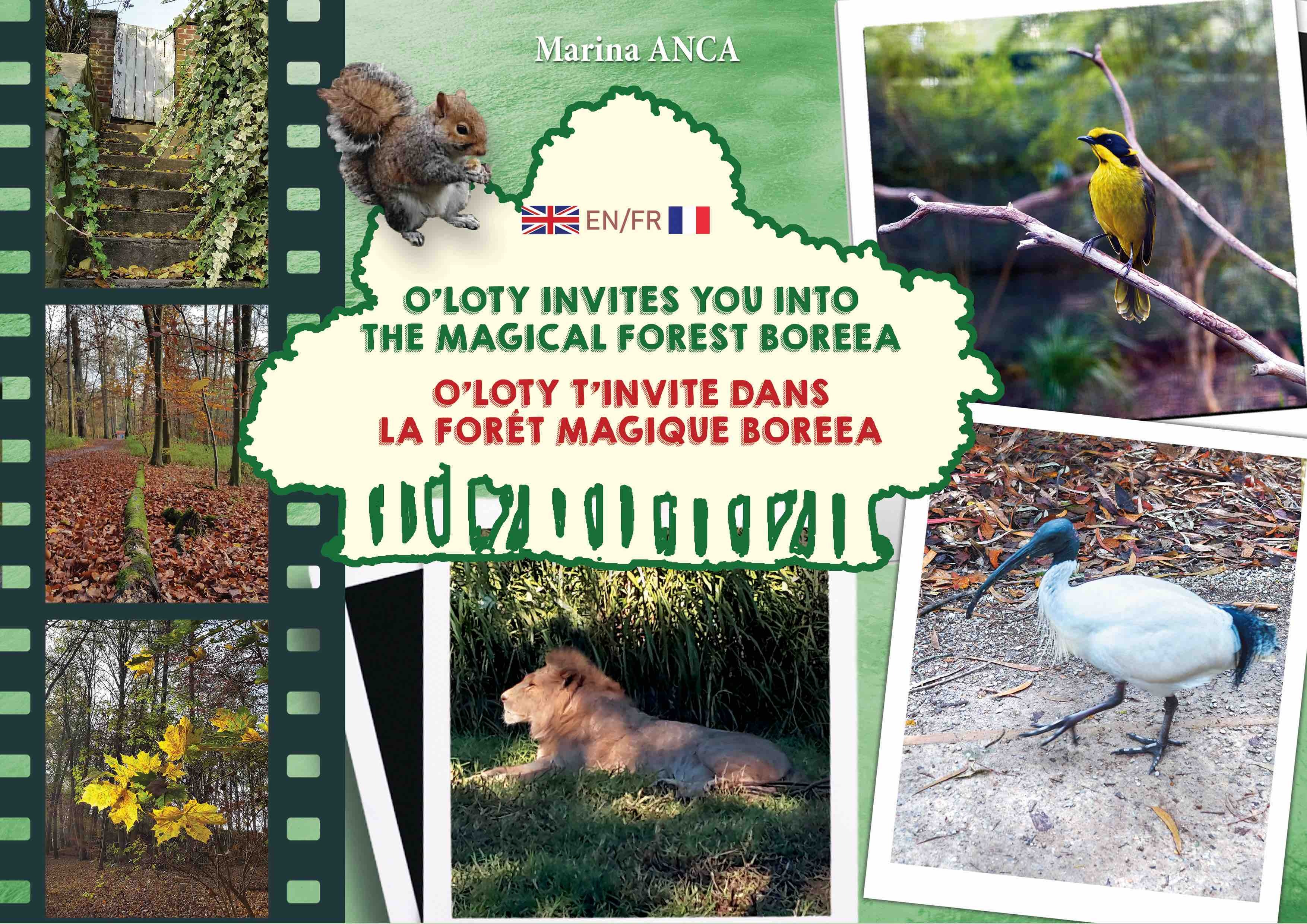 O'LOTY T'INVITE DANS LA FORET MAGIQUE BOREEA - O'LOTY INVITES YOU INTO THE MAGIC FOREST BOREEA
