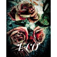 E-CO /ANGLAIS/ESPAGNOL