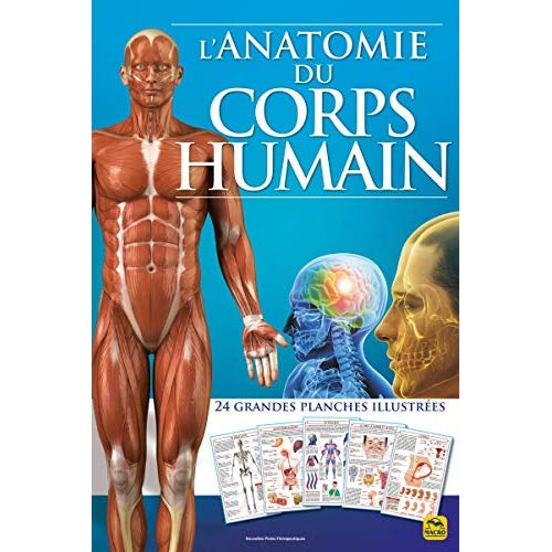 L'ANATOMIE DU CORPS HUMAIN - 24 GRANDES PLANCHES ILLUSTREES
