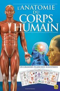 L'ANATOMIE DU CORPS HUMAIN - 24 GRANDES PLANCHES ILLUSTREES