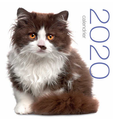 CALENDRIER MURAL 2020  CHATS