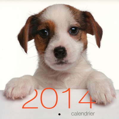 CALENDRIER MURAL CHIENS 2014