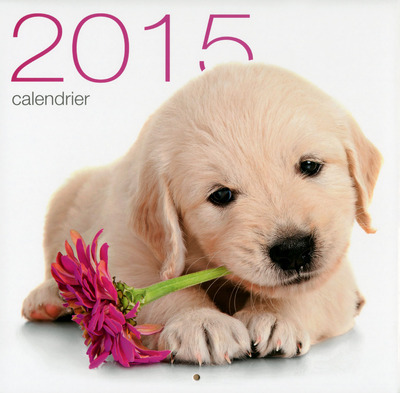 CALENDRIER MURAL CHIENS 2015