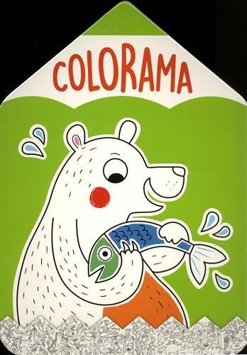COLORAMA OURS VERT