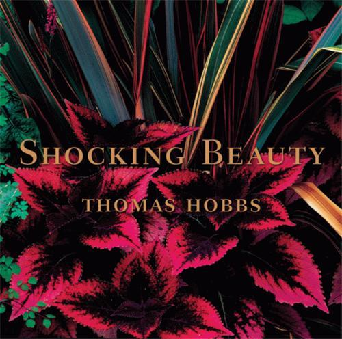 SHOCKING BEAUTY (HARDBACK) /ANGLAIS