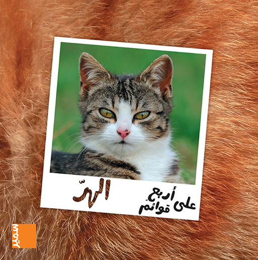 LE CHAT (ARABE)