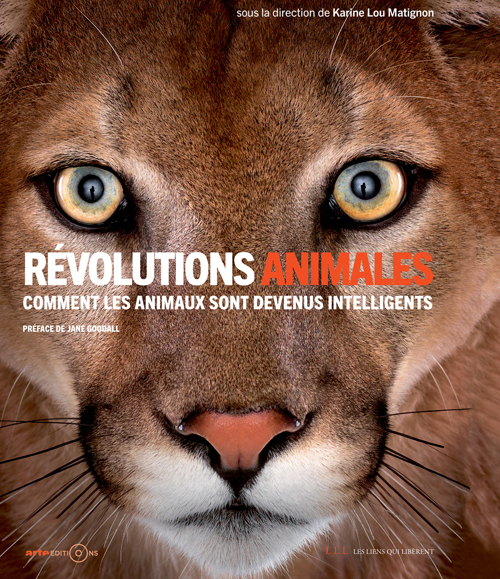 REVOLUTIONS ANIMALES - COMMENT LES ANIMAUX SONT DEVENUS INTELLIGENTS