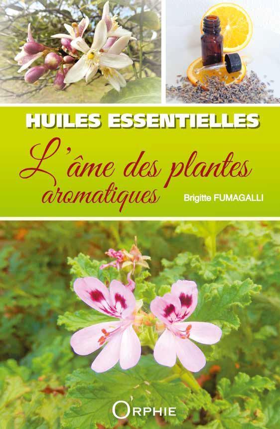 HUILES ESSENTIELLES : L'ART DES PLANTES AROMATIQUES