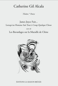JAMES JOYCE FUIT... LORSQU'UN HOMME SAIT TOUT A COUP QUELQUE CHOSE