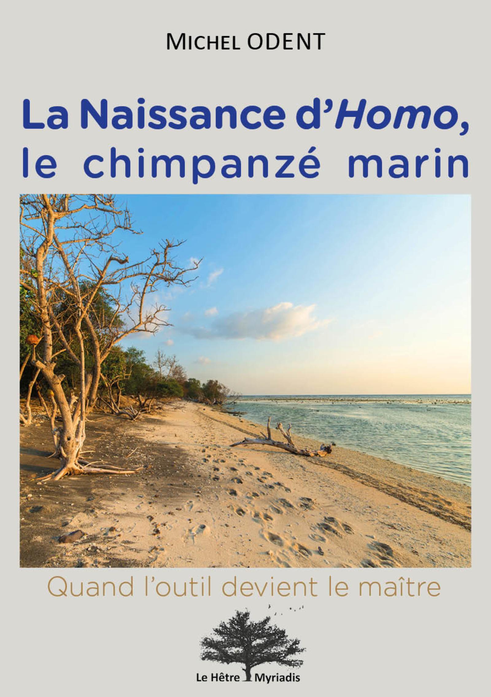 LA NAISSANCE D HOMO LE CHIMPANZE MARIN - QUAND L OUTIL DEVIENT LE MAITRE