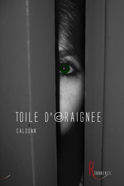 TOILE D'ARAIGNEE