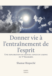 DONNER VIE A L'ENTRAINEMENT DE L'ESPRIT