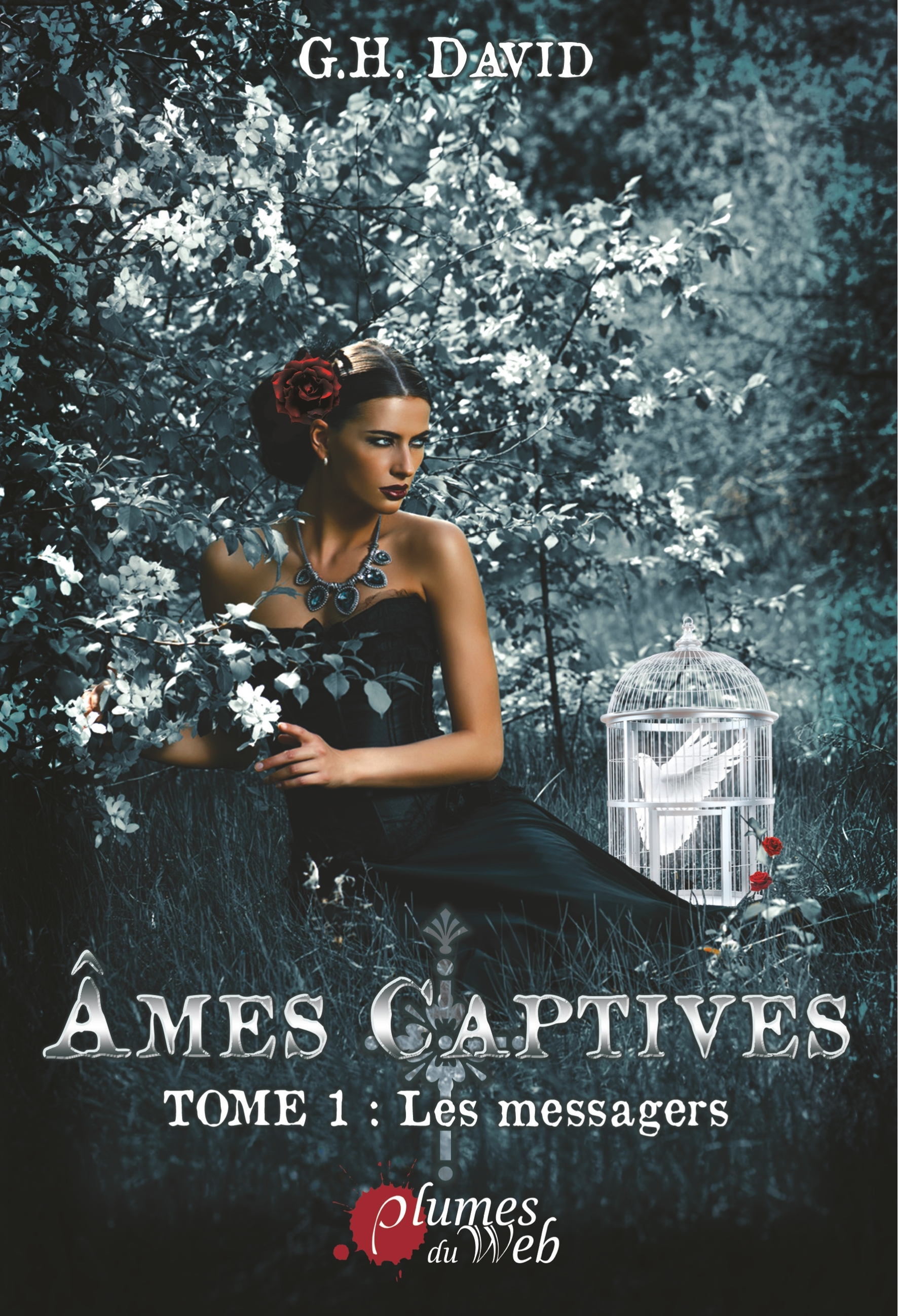 AMES CAPTIVES, TOME 1 : LES MESSAGERS