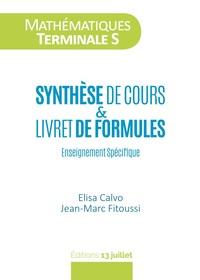 MATHEMATIQUES TERMINALE S : SYNTHESE DE COURS ET LIVRET DE FORMULES
