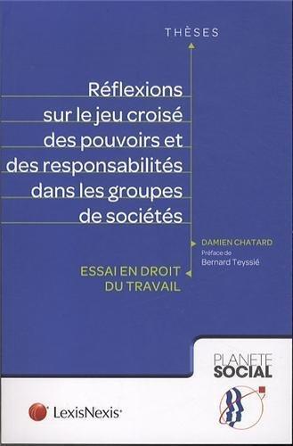 REFLEXIONS SUR LE JEU CROISE DES POUVOIRS ET DES RESPONSABILITES DANS LES GROUPESDE SOCIETES - ESSAI