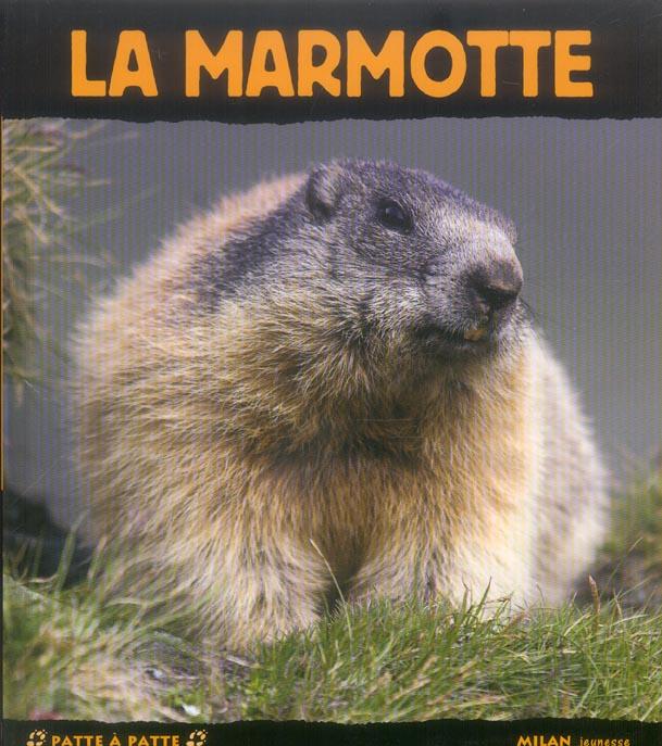 MARMOTTE (LA)