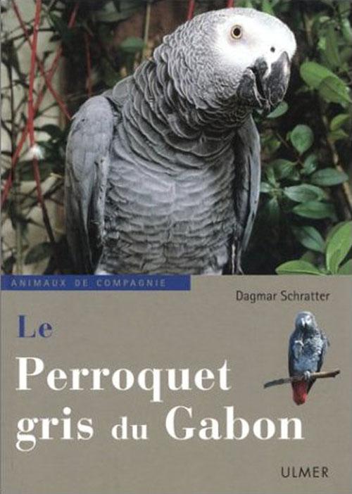 PERROQUET GRIS DU GABON  (LE )