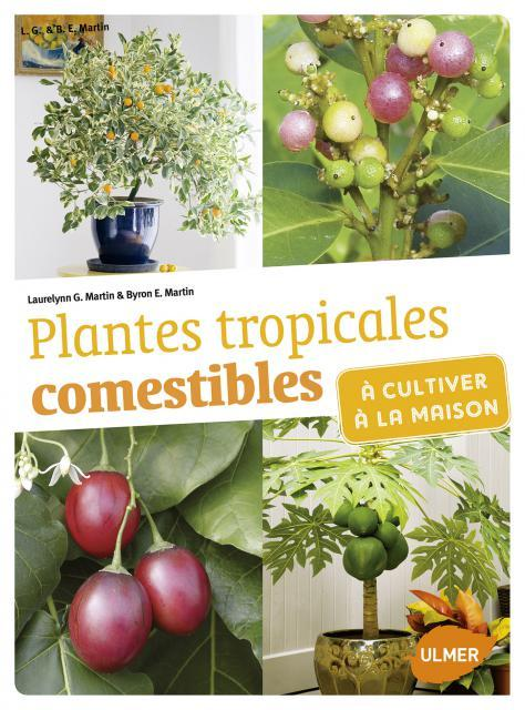 PLANTES TROPICALES COMESTIBLES A CULTIVER A LA MAISON