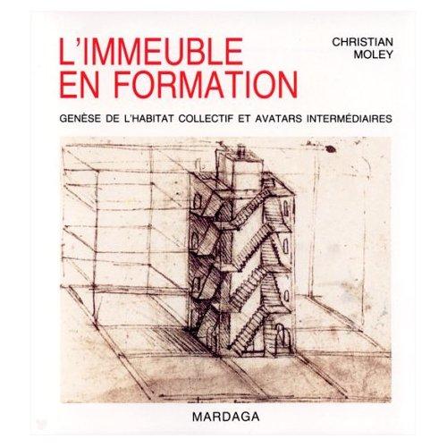 IMMEUBLE EN FORMATION (L')