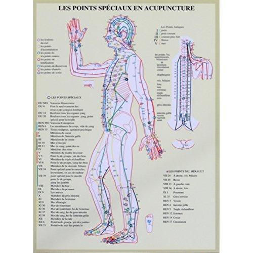 PLANCHE POINTS SPECIAUX EN ACUPUNCTURE - A4