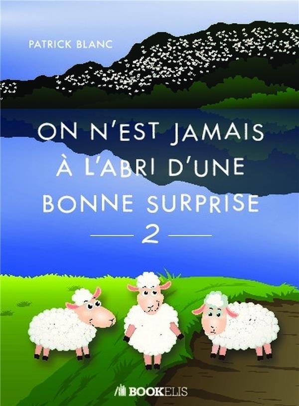 ON N'EST JAMAIS A L'ABRI D'UNE BONNE SURPRISE 2 - BOUQUET DE PETITES HISTOIRES INTERNATIONALES OPTIM