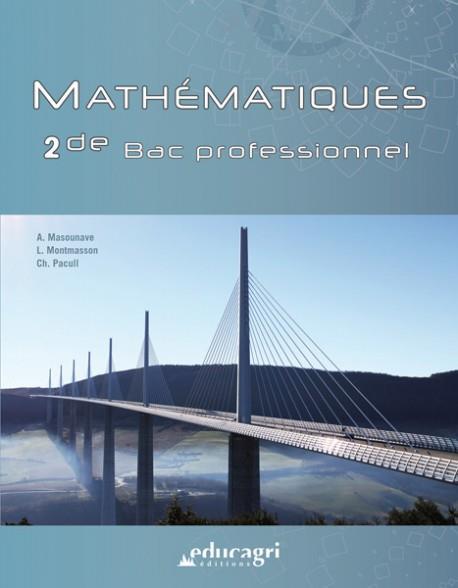 MATHEMATIQUES - 2DE  BAC PROFESSIONNEL