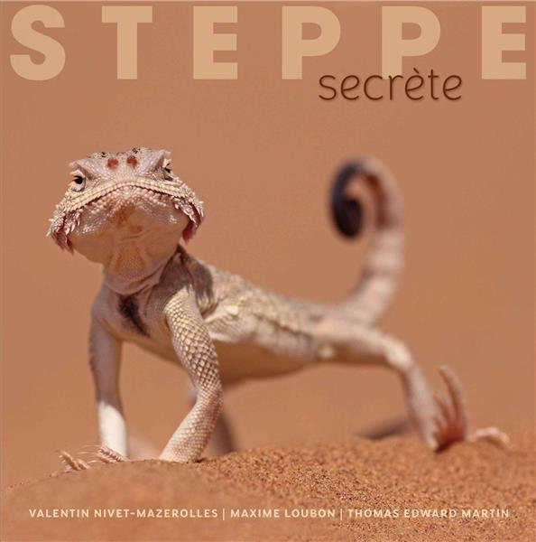 STEPPE SECRETE